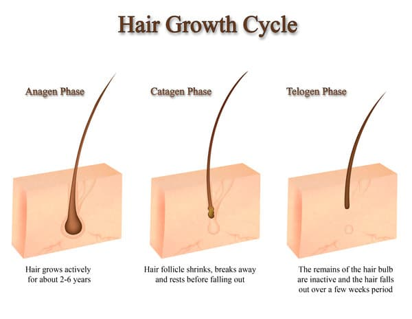 Hair Laser Growth